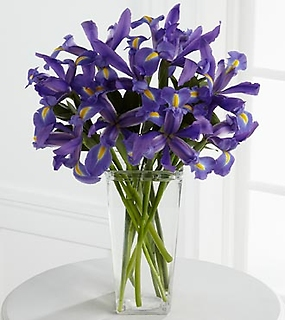 Iris Riches™ Bouquet
